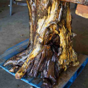 Log Stump Base 0601